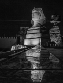 Sphynx statue at night
